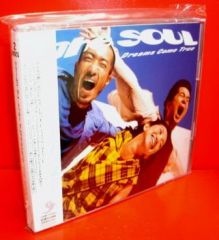 DREAMS COME TRUE ドリームズ・カム・トゥルー 初期ベスト~THE SOUL(CD2枚組/送料サービス)