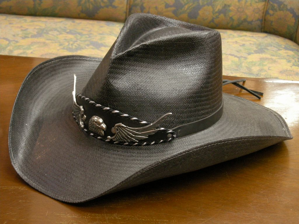STETSON Charlie 1(First) Horse GENUINE SHANTUNG PANAMA(30X)、FAST LANE(カウボーイハット) ss-mi196 H-0224